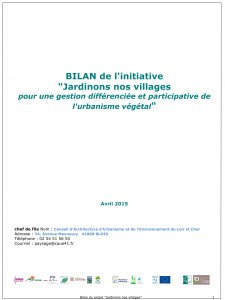 Microsoft Word - bilan initiative général.doc