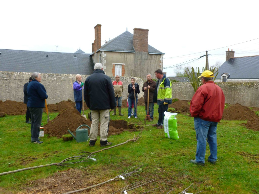 Plantations maves participatif 11_04_15-7
